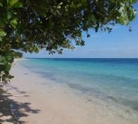 green-island-qld