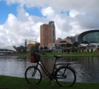 River_Torrens_Linear_Park