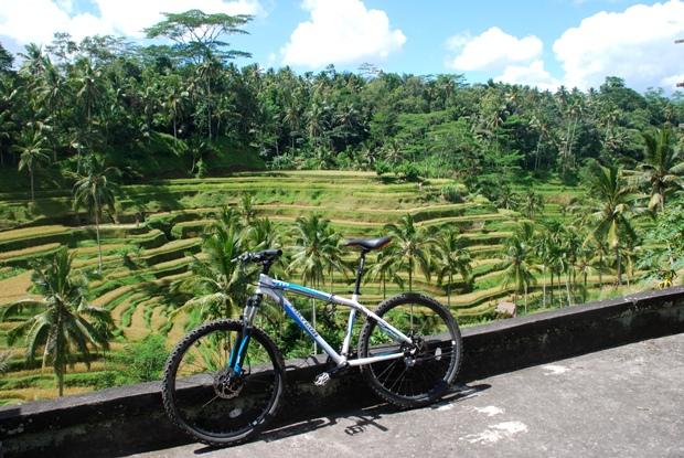 bike-ubud