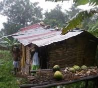La casa di un farmer vicina alle piantagioni