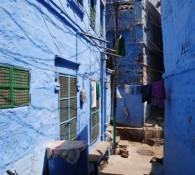 jodhpur-blu-2